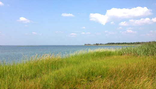 Connors, Rumpf & Gove Request Status Update on Soil Restoration Standards Required Under Barnegat Bay Initiative