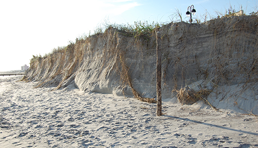 Rumpf Named to State Beach Erosion Commission