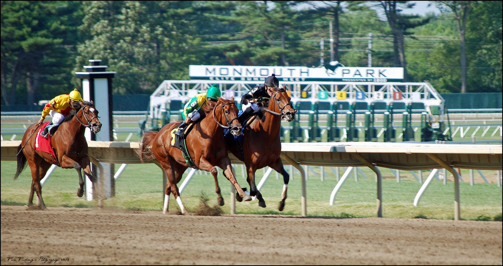 Nj sports gambling monmouth park