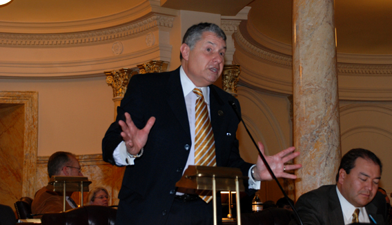 Senator Singer Speaking During Senate Session on February 22, 2010