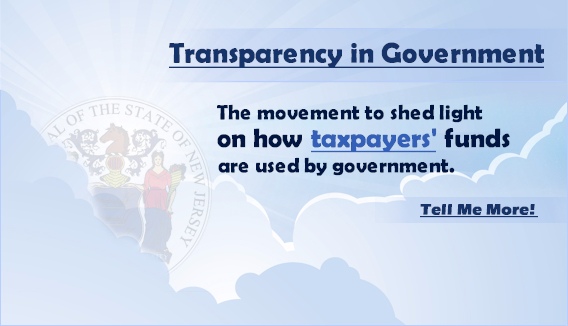 Click here for more on the Transparency in Government Act