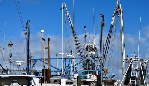 Testa Bill Excusing Commercial Fisherman from State Unemployment Tax Advances